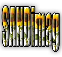 Sandimag